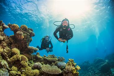 5 Day Learn to Dive Course
